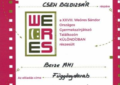 cseh boldizsár különdíj